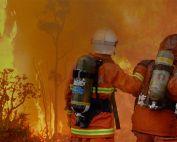 Scavenger banner bg 1900 bushfires 1 177x142 - Fire & Safety