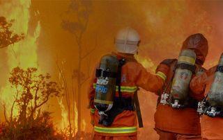 Scavenger banner bg 1900 bushfires 1 320x202 - News